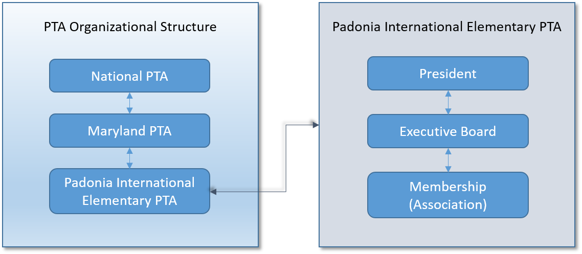 PTA Structure and Board of Directors